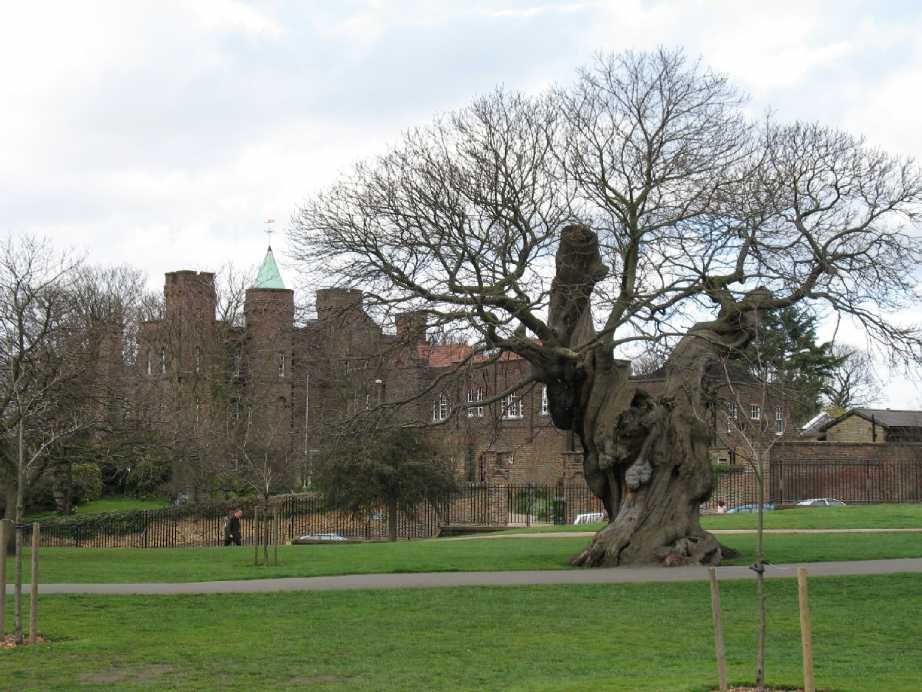 Greenwich Park, view of Vanbrugh Castle on Maze Hill