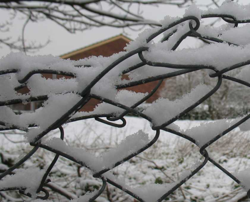 Snow on chain link fence