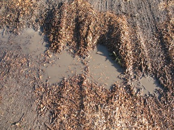 Tyre tracks in wood chippings and mud
